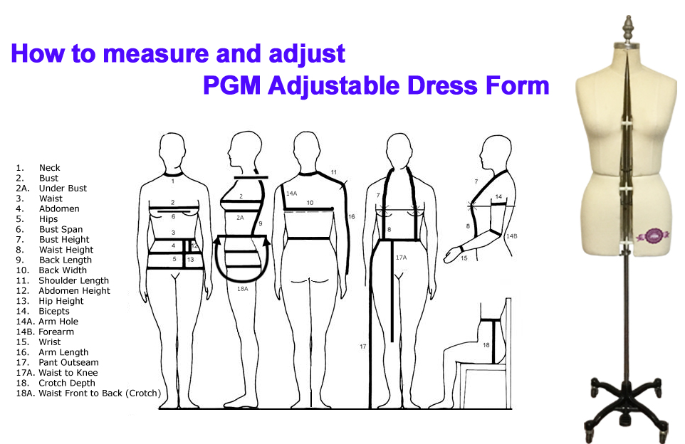 How to measure dress form, how to adjust PGM Adjustable Dress Form, European size dress form
